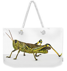 Grasshopper Weekender Tote Bag by James Larkin