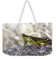 Grasshopper Weekender Tote Bag by Joseph Skompski