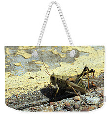 Grasshopper Laying Eggs Weekender Tote Bag
