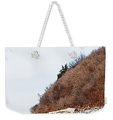 Grassy Dune Weekender Tote Bag