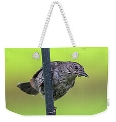 Gray Catbird After The Rain #2 Weekender Tote Bag