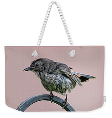 Gray Catbird After The Rain Weekender Tote Bag