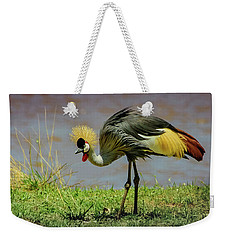Weekender Tote Bag featuring the photograph Gray Crowned Crane by Janis Knight