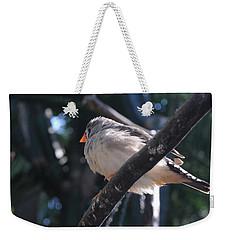 Gray Crowned Rosy Finch   Weekender Tote Bag by Haleh Mahbod