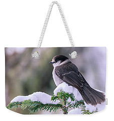 Gray Jay Weekender Tote Bag