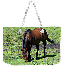 Weekender Tote Bag featuring the photograph Grazing Bay by Ann E Robson