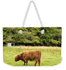 Weekender Tote Bag featuring the photograph Grazing by Christi Kraft