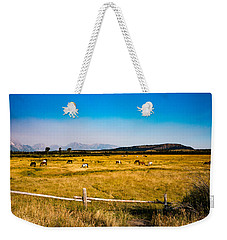 Grazing Horses Weekender Tote Bag by Cathy Donohoue