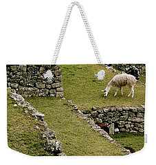 Grazing In Machu Picchu Weekender Tote Bag