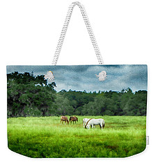 Weekender Tote Bag featuring the photograph Grazing by Judy Hall-Folde