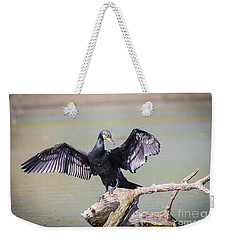 Great Black Cormorant Drying Wings After Fishing Weekender Tote Bag