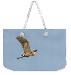 Weekender Tote Bag featuring the photograph Great Blue Heron 2015-17 by Thomas Young