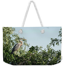 Weekender Tote Bag featuring the photograph Great Blue Heron  2015-18 by Thomas Young