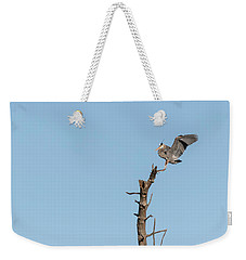 Great Blue Heron 2017-4 Weekender Tote Bag by Thomas Young
