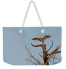 Great Blue Heron 2017-7 Weekender Tote Bag by Thomas Young