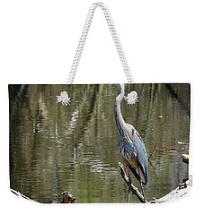 Weekender Tote Bag featuring the photograph Great Blue Heron At Johnson Park by Ricky L Jones
