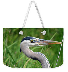 Great Blue Heron Close-up Weekender Tote Bag