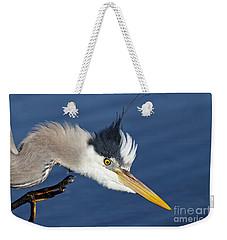Great Blue Heron - Good Scratch Weekender Tote Bag