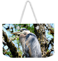 Great Blue Heron In A Tree Weekender Tote Bag
