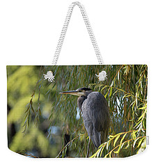 Great Blue Heron In A Willow Tree Weekender Tote Bag by Keith Boone