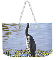 Weekender Tote Bag featuring the photograph Great Blue Heron by Phyllis Denton