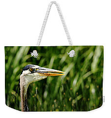 Weekender Tote Bag featuring the photograph Great Blue Heron Portrait by Debbie Oppermann