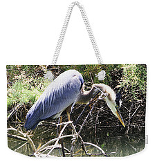 Great Blue Heron Ruffles Its Feathers Weekender Tote Bag
