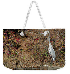 Weekender Tote Bag featuring the photograph Great Blue Heron Standing Tall by George Randy Bass