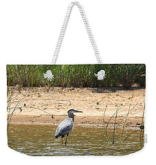Weekender Tote Bag featuring the photograph Great Blue Heron Wading by Sheila Brown