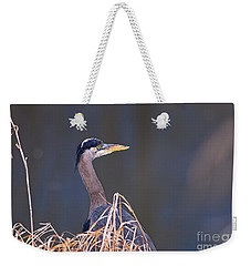 Weekender Tote Bag featuring the photograph Great Blue Heron Waiting by Sharon Talson