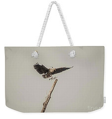 Weekender Tote Bag featuring the photograph Great Blue Landing by David Bearden