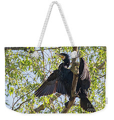 Weekender Tote Bag featuring the photograph Great Cormorant - High In The Tree by Jivko Nakev
