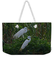 Great Egret Displays Windy Mating Plumage 2 Weekender Tote Bag