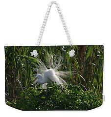 Great Egret Displays Windy Mating Plumage Weekender Tote Bag