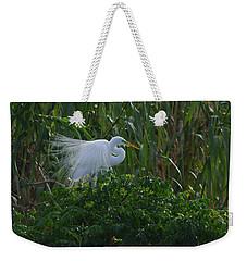 Great Egret Displays Windy Plumage Weekender Tote Bag