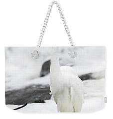 Weekender Tote Bag featuring the photograph Great Egret In All White  by Ricky L Jones
