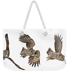 Weekender Tote Bag featuring the photograph Great Grey Owl Hunting by Mircea Costina Photography