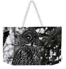 Great Grey Owl Portrait Weekender Tote Bag