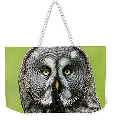 Great Grey's Portrait Closeup Square Weekender Tote Bag