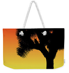 Great Horned Owl In A Joshua Tree Silhouette At Sunset Weekender Tote Bag