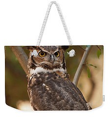 Weekender Tote Bag featuring the photograph Great Horned Owl In A Tree 3 by Chris Flees