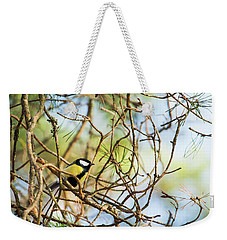 Great Tit Male Waiting For The Spring To Come Weekender Tote Bag
