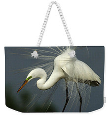Majestic Great White Egret High Island Texas Weekender Tote Bag by Bob Christopher