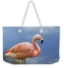 Greater Flamingo Weekender Tote Bag by Afrodita Ellerman
