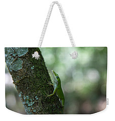 Green Anole Weekender Tote Bag by Christopher L Thomley