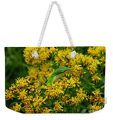 Green Anole Hiding In Golden Rod Weekender Tote Bag