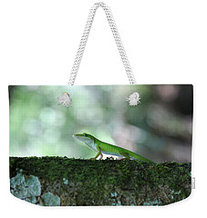 Green Anole Posing Weekender Tote Bag by Christopher L Thomley