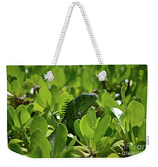 Green Common Iguana In A Shrub Weekender Tote Bag by DejaVu Designs