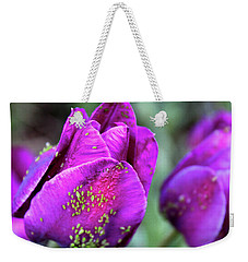 Weekender Tote Bag featuring the photograph Aphids On Purple Tulips by Melinda Blackman