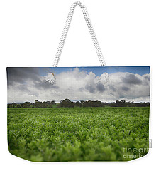 Weekender Tote Bag featuring the photograph Green Fields 4 by Douglas Barnard